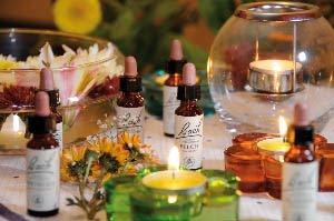 Terapia Floral contra las Enfermedades Físicas y Emocionales.