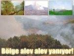 Askerler 36 bölgede ormanları ateşe verdi