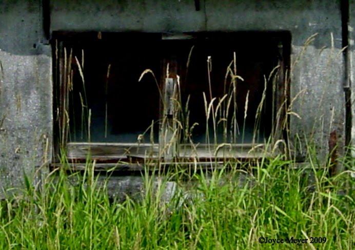 [Abandoned+House+]