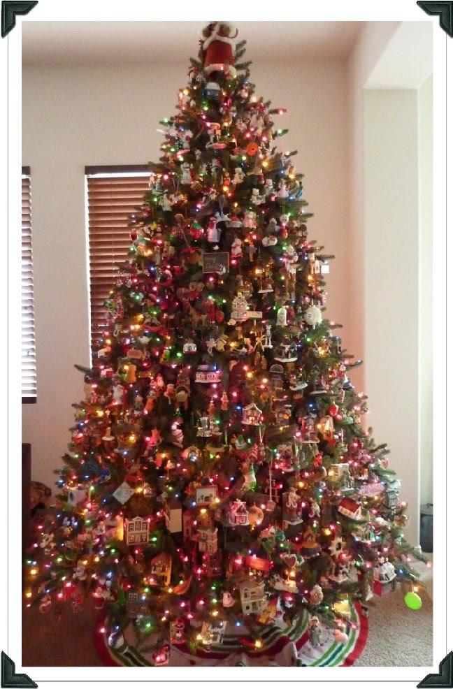 MY TREE 2009