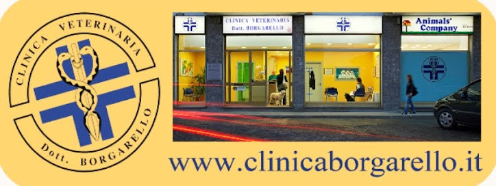 clinicaborgarello.it