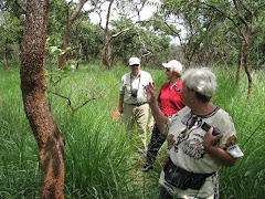 LOOKING FOR WILDLIFE IN NORTHERN UGANDA
