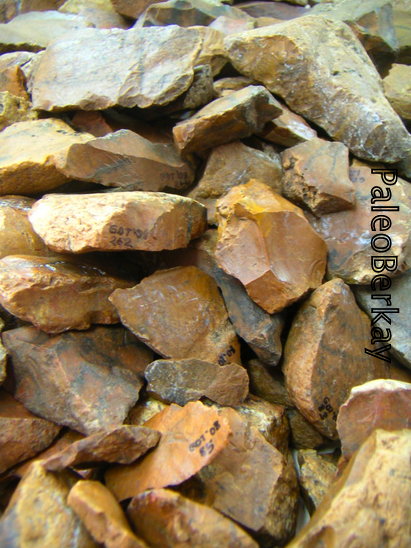 [paleolithic-stone-tools-gorukle.png]