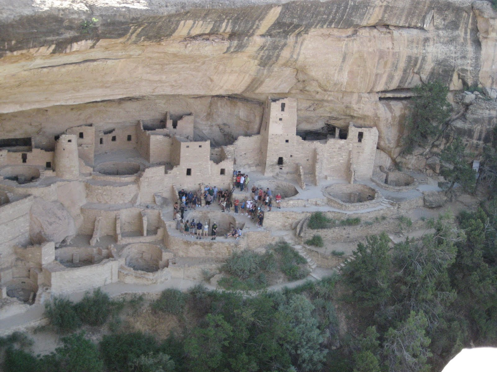 mesa verde national park hispanic singles Book your stay at the historic far view lodge in beautiful mesa verde national park book your adventure today.