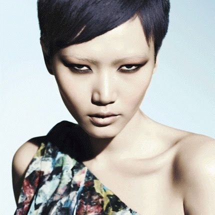 Gwen Model http://asianmodelsblog.blogspot.com/2011/01/gwen-lu-in-ad-campaign-for-aveda-super.html