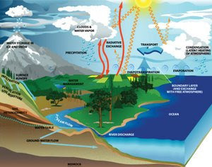 Water Cycle Affect Weather and Climate