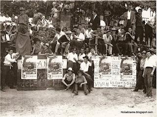Toros en Candelario