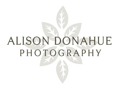 alison donahue photography