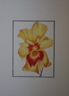 Watercolor Flower - Yellow Pansey