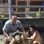 glass bottom boat, turtle, watersport, bali, tanjung benoa