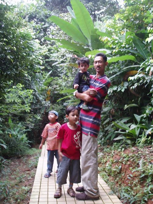 Hutan Simpan bukit Nanas