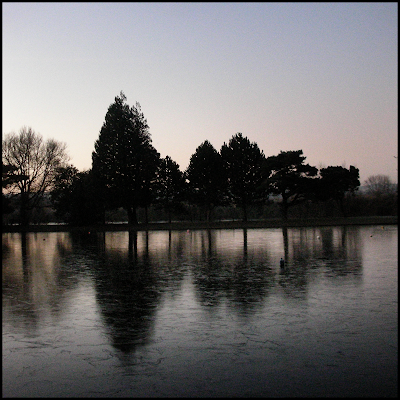 Early morning in Oxford, ice reflecting trtees