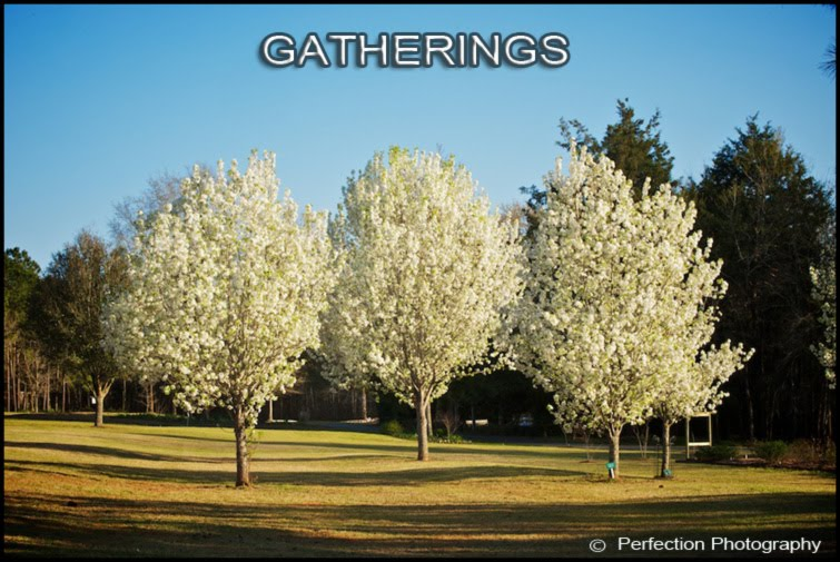 Gatherings