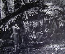 The Nomadic Penan