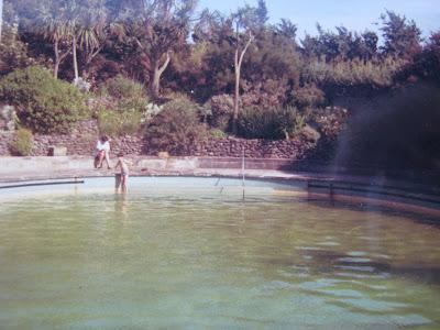 Lord Belmont In Northern Ireland Mount Stewart Pool