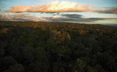 Cristalino State Park