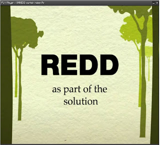 REDD as part of the solution
