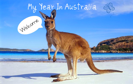 my year in australia