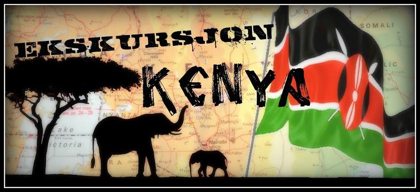 Ekskursjon til Kenya 2011