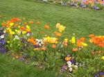 Jardines de Ginebra
