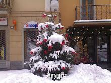 Saint Vincent- Blanca Navidad -