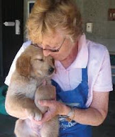 A puppy being held by a puppy socializer