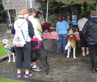 Walkers registering with their dogs under the tent
