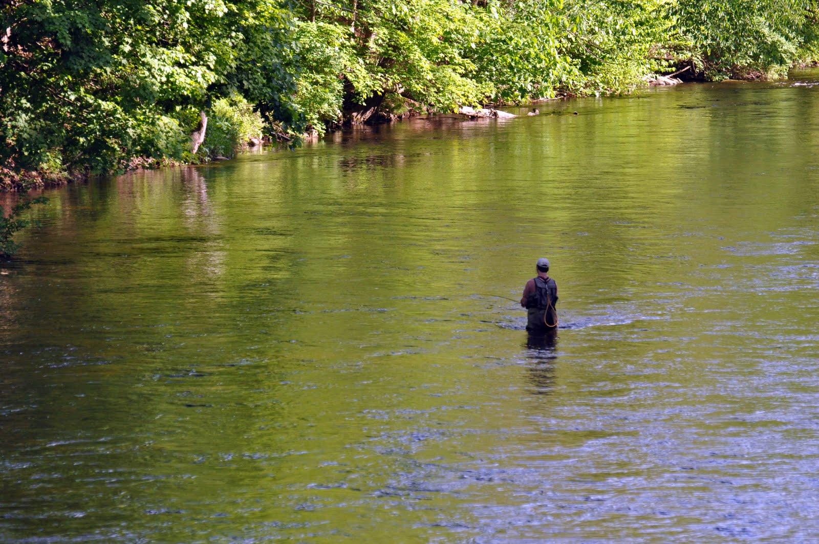 New england photos may 2010 for Farmington river fishing