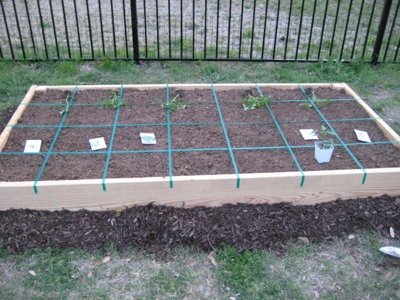 DIY Vegetable Garden Update
