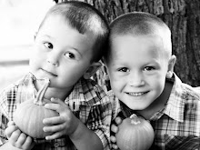 devin &amp; brayden