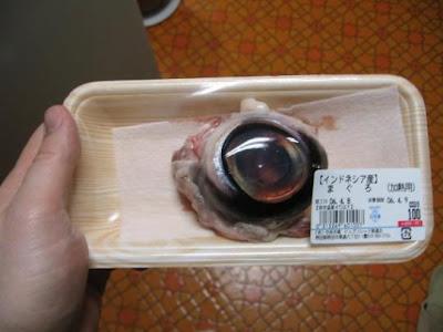 Makanan Manusia Teraneh di Dunia