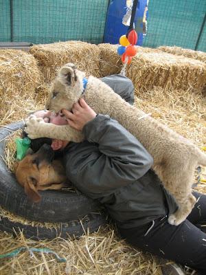 Kebun Binatang Paling Berbahaya di Dunia - Lujan Zoo6