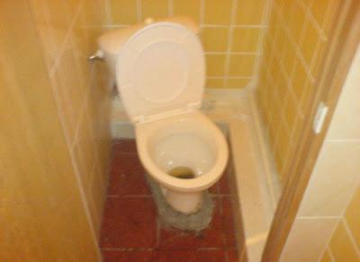 fun in toilets