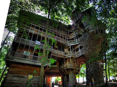 The World's Largest Tree House Seen On www.coolpicturegallery.net