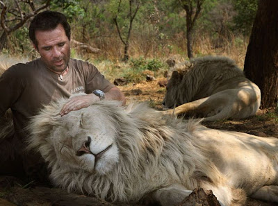 The Lion Whisperer -  Kevin Richardson Seen On www.coolpicturegallery.us