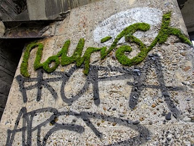 natural, graffiti alphabet, plant