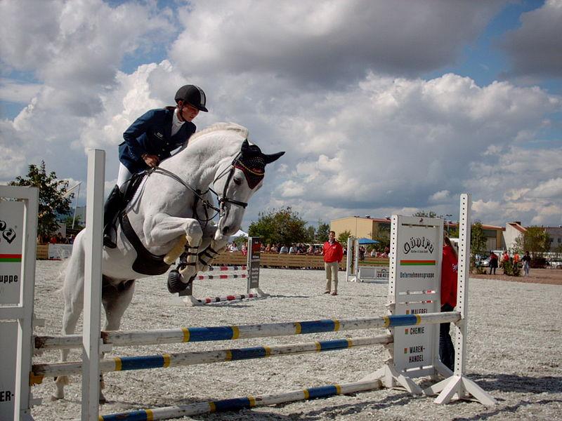 [800px-Showjumping_white_horse.jpg]