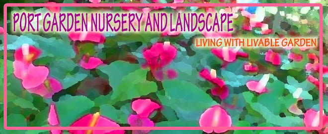 port garden nursery and landscape