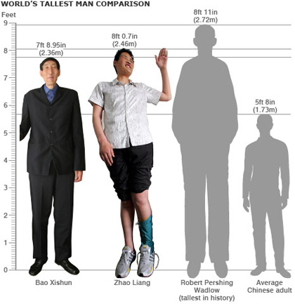 [worlds-tallest-man-comparison.jpg]