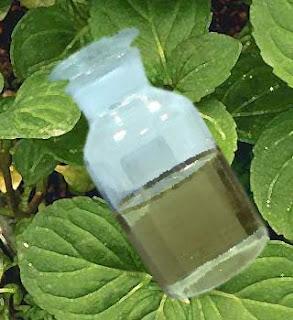 http://3.bp.blogspot.com/_mr-PNhz6Xhg/TTXetf5mc0I/AAAAAAAACtU/2iPugx94LmA/s320/peppermint-oil-toothpaste.jpg