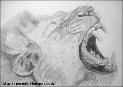 Kresleni Tuzkou Drawing Portraits By Pernak Lev Pustinny