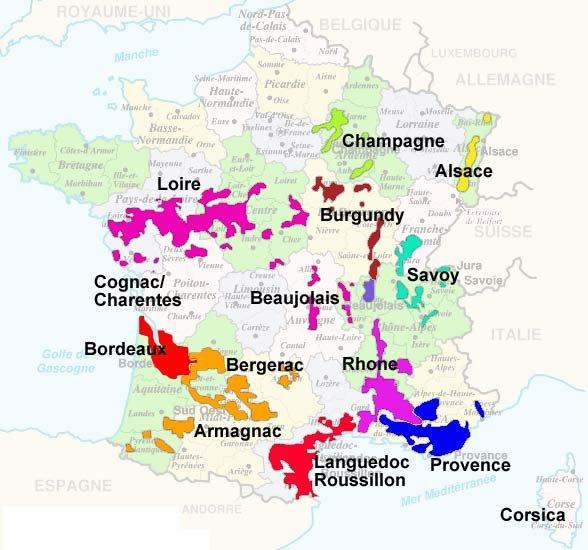 Burgundy vs bordeaux - The splendid transformation of a vineyard in burgundy ...