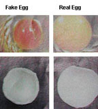 Picture of comparing fake and real egg
