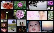 Yongyee第一代  Blog Header