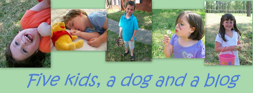Five kids, a dog and a blog
