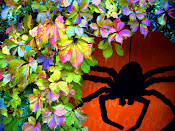Click on the spider.Check out my Halloween Blog. (Spooky Hollow Lane)