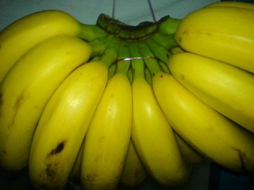 http://3.bp.blogspot.com/_n-7fOeq--8s/S8LCFfrZADI/AAAAAAAAADI/LoPI48sMNww/s1600/pisang1.jpg