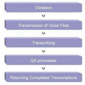 Quality assurance for medical transcription homework help