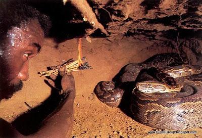 Anaconda Hunters