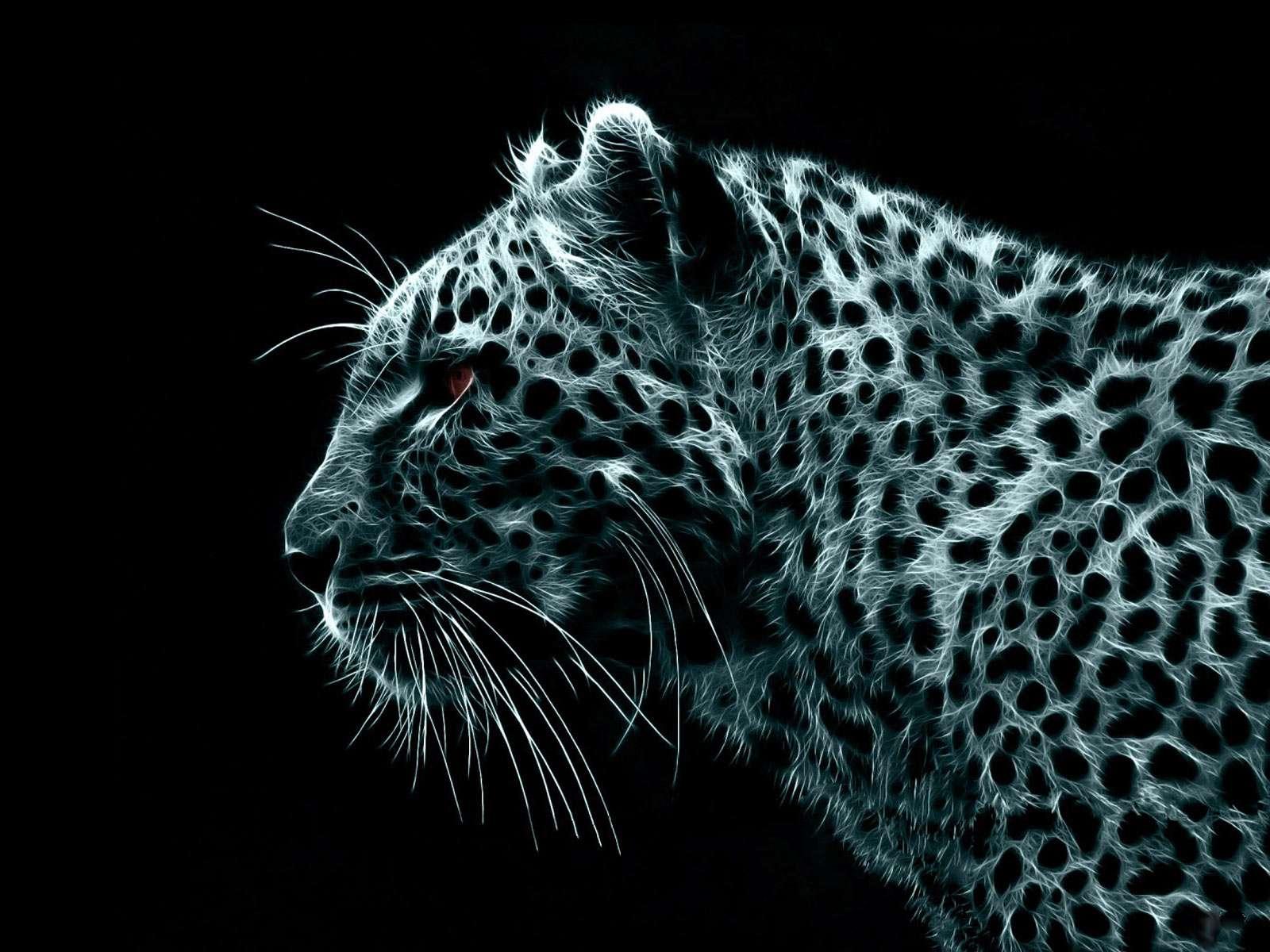 Leopardo per desktop aggressivi immagini e sfondi per for Foto spettacolari per desktop